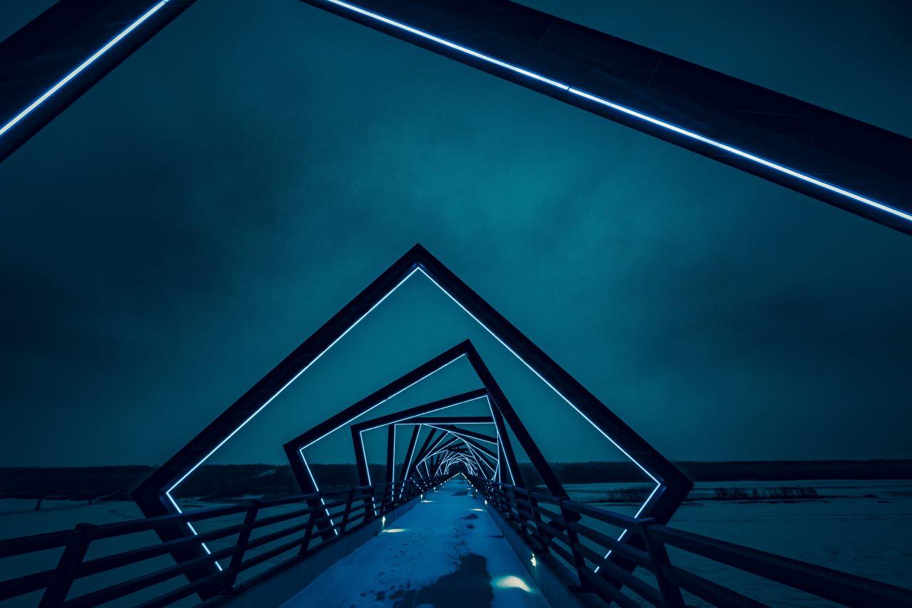 bridge-worm